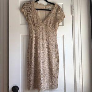 Cache lace dress